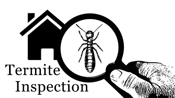 Please call Sharon at 918-214-1400 or email sharonleach@kw.com. She can help with referring you a professional who can do Termite Inspection.
